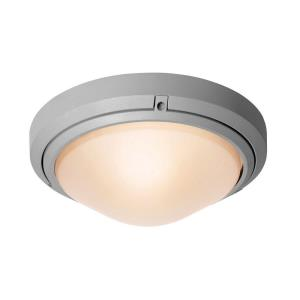 Oceanus Wet Location Ceiling or Wall Fixture