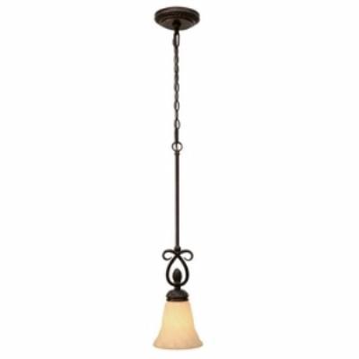 Golden Lighting 8106-M1L Torbellino - One Light Mini Pendant