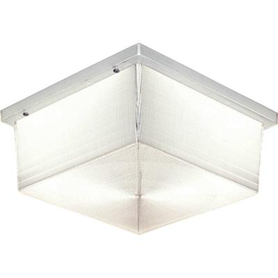 Progress Lighting P5791-68 Hard-Nox - Two Light Outdoor Flush Mount