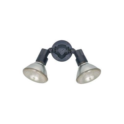Sea Gull Lighting 8642-12 Two Light Outdoor