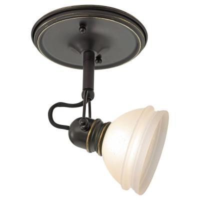 Sea Gull Lighting 94883-71 One Light Trenton Directional Mono Point