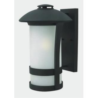 Hinkley Lighting 2705BK-GU24 Chandler - Fourteen Light Outdoor Wall Mount